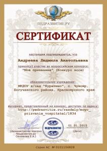 сертификат конкурс эссе